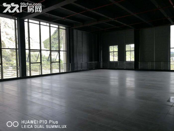 贵惠大道厂房商务楼出租-图(3)
