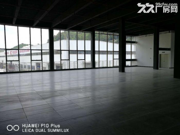贵惠大道厂房商务楼出租-图(8)
