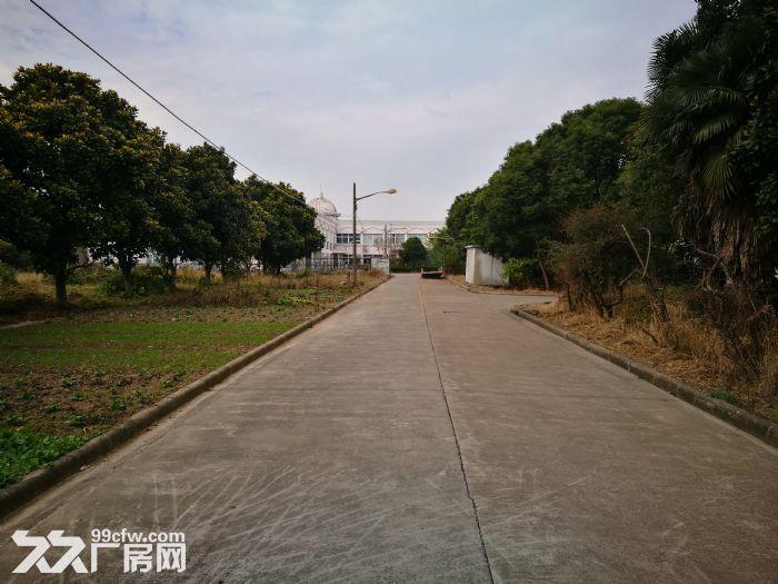 奉贤四团104板块厂房出租-图(1)
