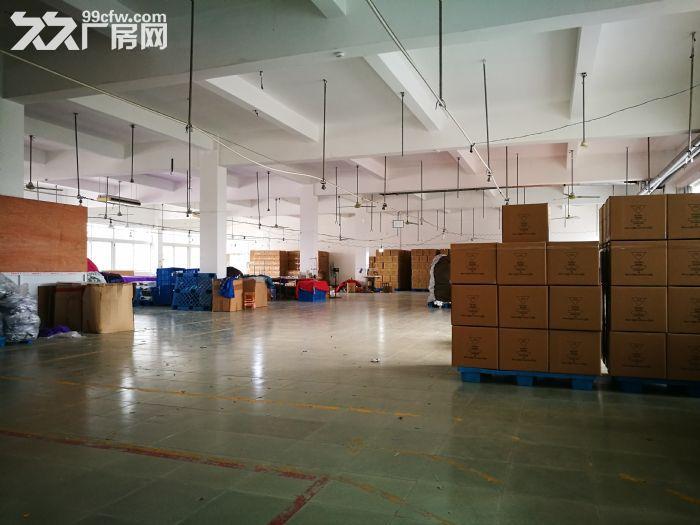 奉贤四团104板块厂房出租-图(5)