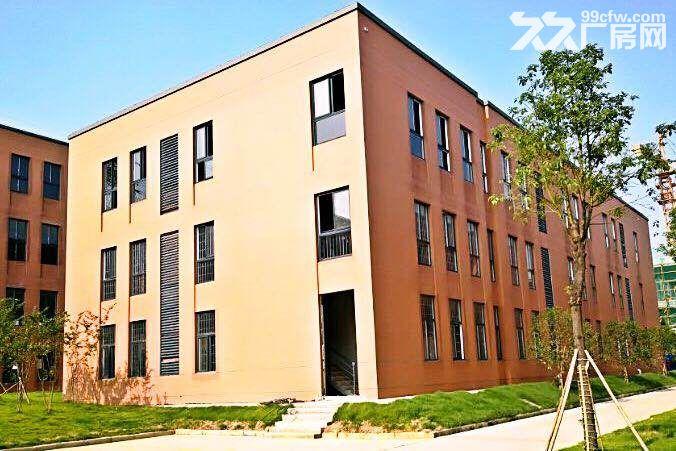 岳麓大道以西2层独栋单独一楼出租已装修-图(1)