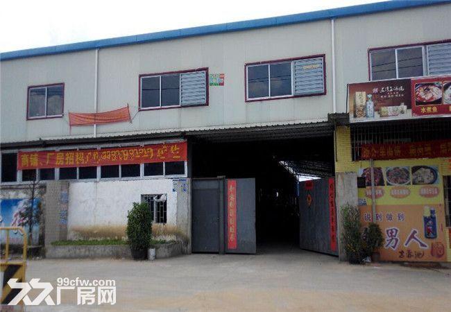 大路边,工业园管理,榄核镇1500平方简易厂出租-图(1)