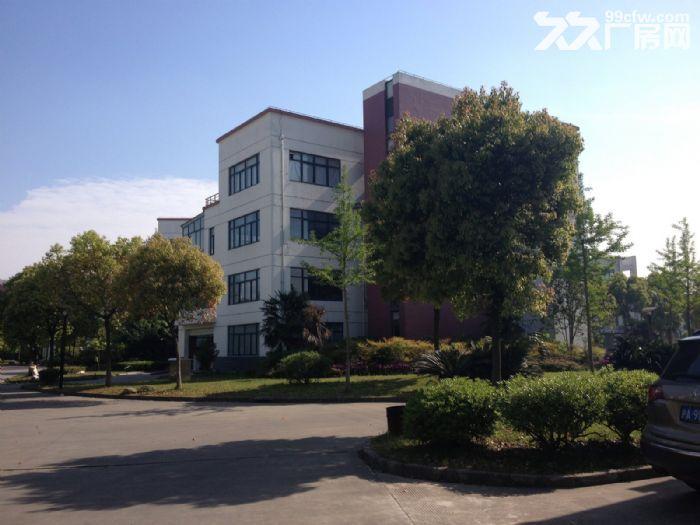 松江新桥科技创业中心474平方办公装修出租办公仓储小加工-图(7)