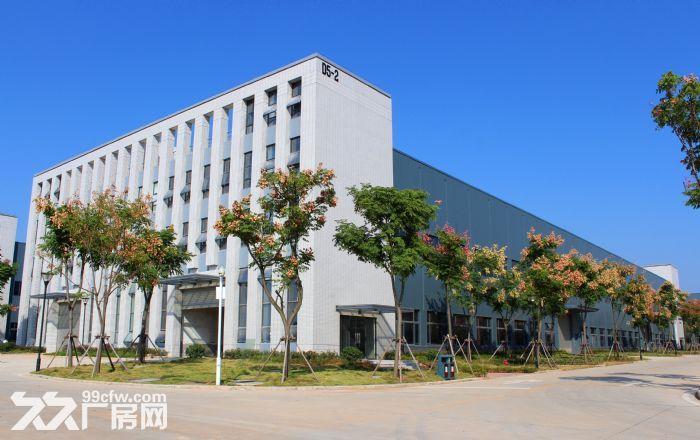 (出租)葛店开发区1000平多层厂房出售-图(3)