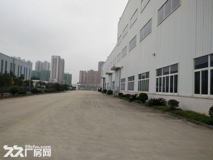 龙泉经开区成龙大道旁3000平有环评带32吨行车-图(1)