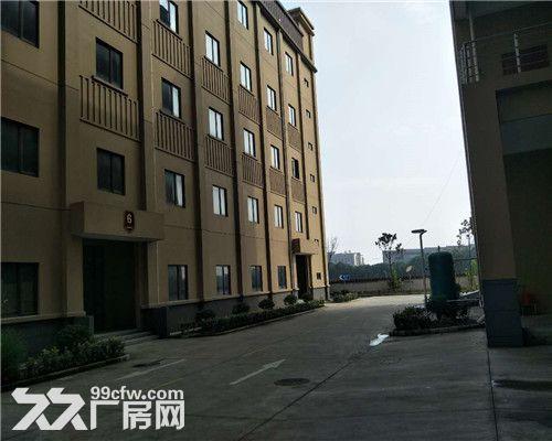 千灯独栋4层2200平米厂房出租可分割产证齐全位置佳电量充足-图(1)