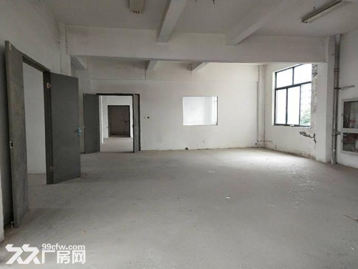 千灯独栋4层2200平米厂房出租可分割产证齐全位置佳电量充足-图(2)