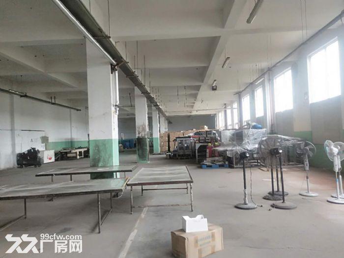 千灯镇公司分租1楼800平厂房出租-图(2)
