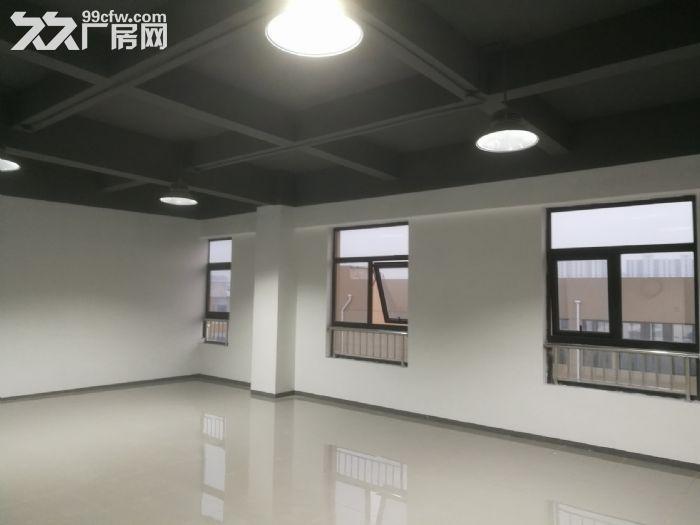 新区城铁新城,永旺宜家在身旁-图(7)