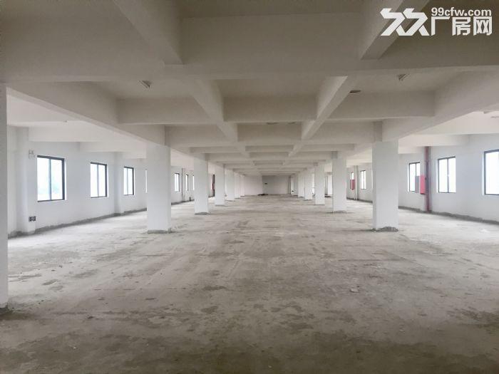 珠海高栏港经济区好顺发物流仓库、空地、厂房、办公室出租-图(3)