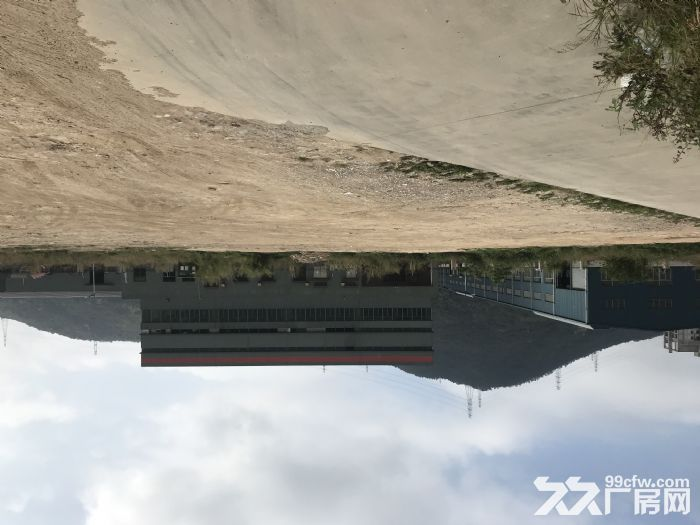 珠海高栏港经济区好顺发物流仓库、空地、厂房、办公室出租-图(6)