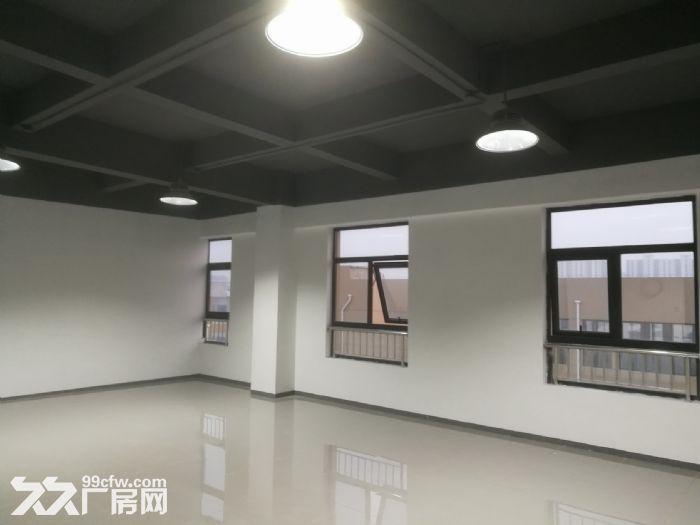 全新厂房,优惠待租,有货梯-图(7)