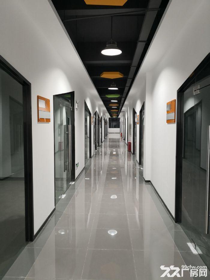 全新厂房,优惠待租,有货梯-图(8)