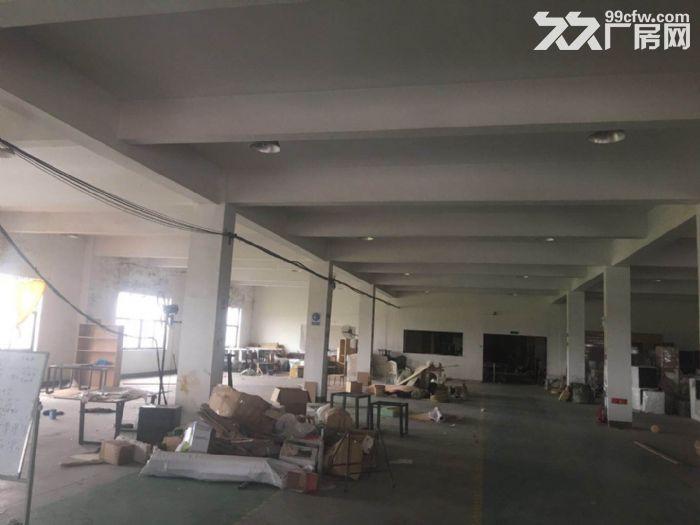 104地块独院出租厂房-图(4)