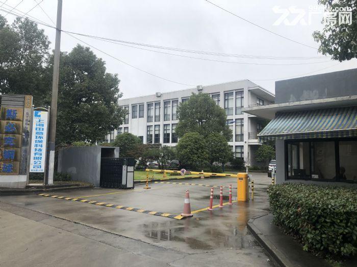 出租浦东航头镇已隔好厂房办公室仓库,适合电商,摄影,培训机构-图(3)