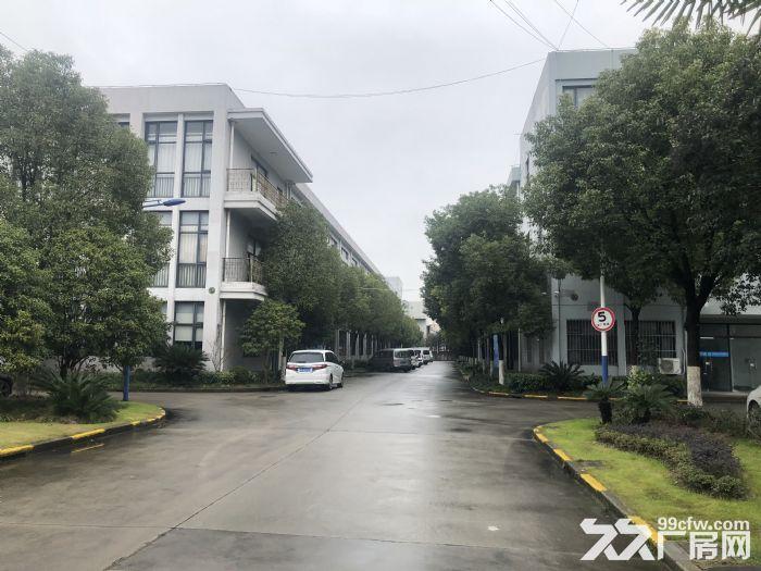 出租浦东航头镇已隔好厂房办公室仓库,适合电商,摄影,培训机构-图(4)