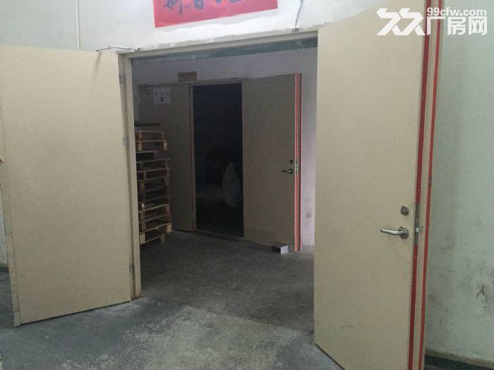 凤岗官井头高大上厂房出租四楼1500平方,环境好-图(4)