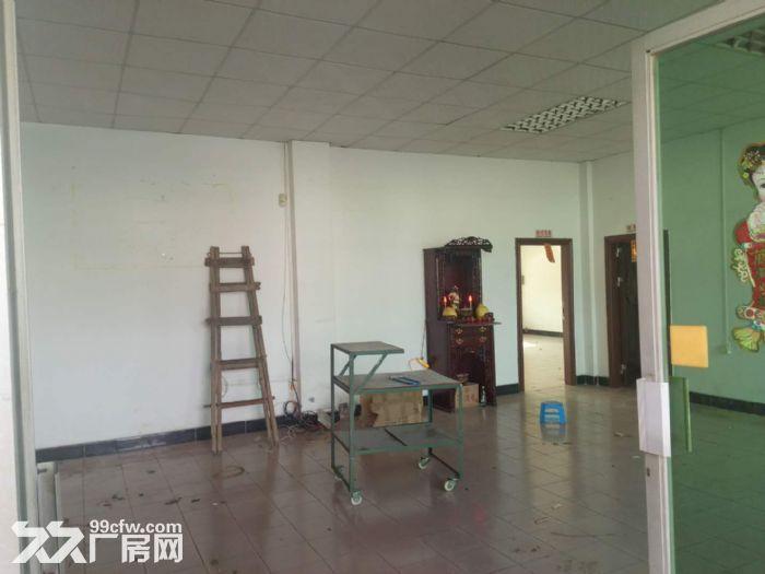 清溪三星小面积独栋厂房出租适合小加工电商贸易-图(3)