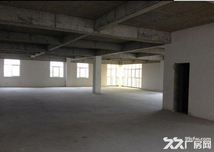 闵行独门独院11000平工业厂房出租-图(4)