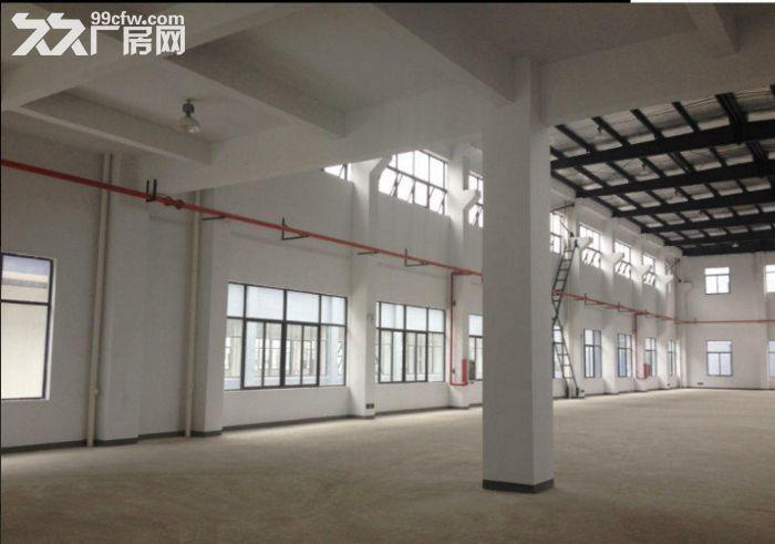 闵行独门独院11000平工业厂房出租-图(6)