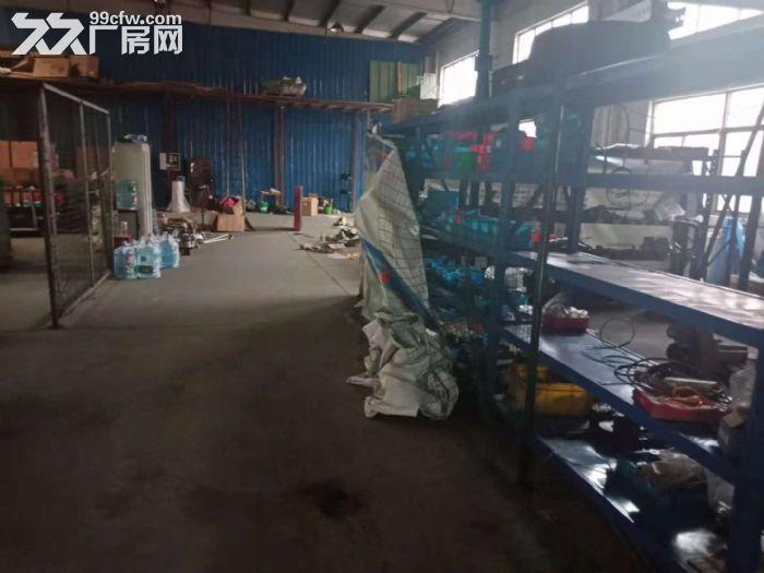 花桥镇单层450平证件齐全厂房出租-图(3)