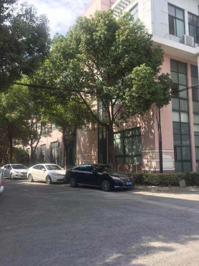 九泾路附近,5000平方3层厂房,仓库出售,产证齐全,4000万-图(4)