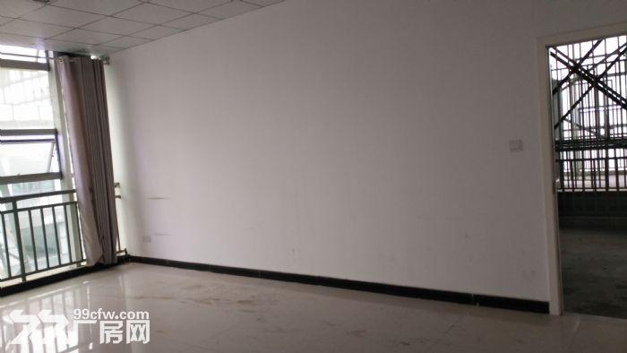 温江仓库出租1000㎡钢架结构布局合理可做轻加工-图(2)