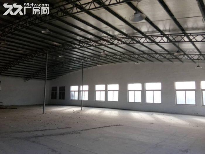 天津市武清区18000㎡独栋厂房出租业主直租免中介费-图(5)