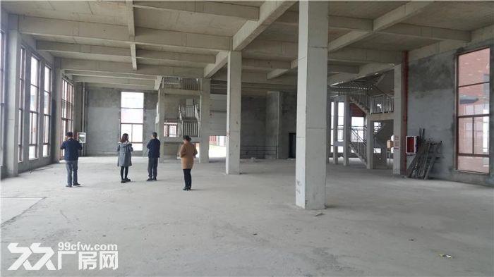 江门顺德高明均有售出售全新厂房50年独立产权-图(2)