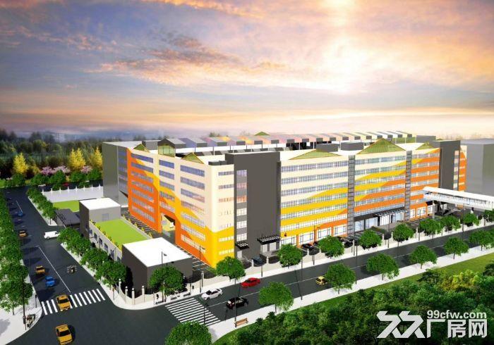 西丽高端办公研发厂房写字楼30000平大小分租-图(2)