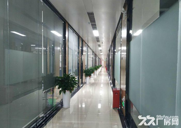 西丽高端办公研发厂房写字楼30000平大小分租-图(3)