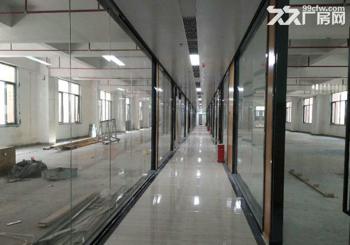 西丽高端办公研发厂房写字楼30000平大小分租-图(4)