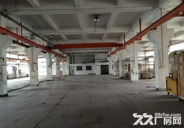 红本厂房石岩高速口新出厂房共4层10000平可办环评-图(4)
