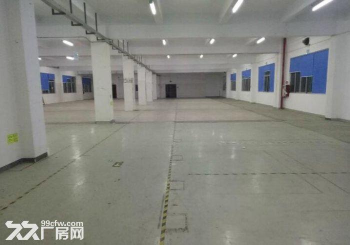 500平米起租光明南光高速出口独院三层6600平米-图(4)