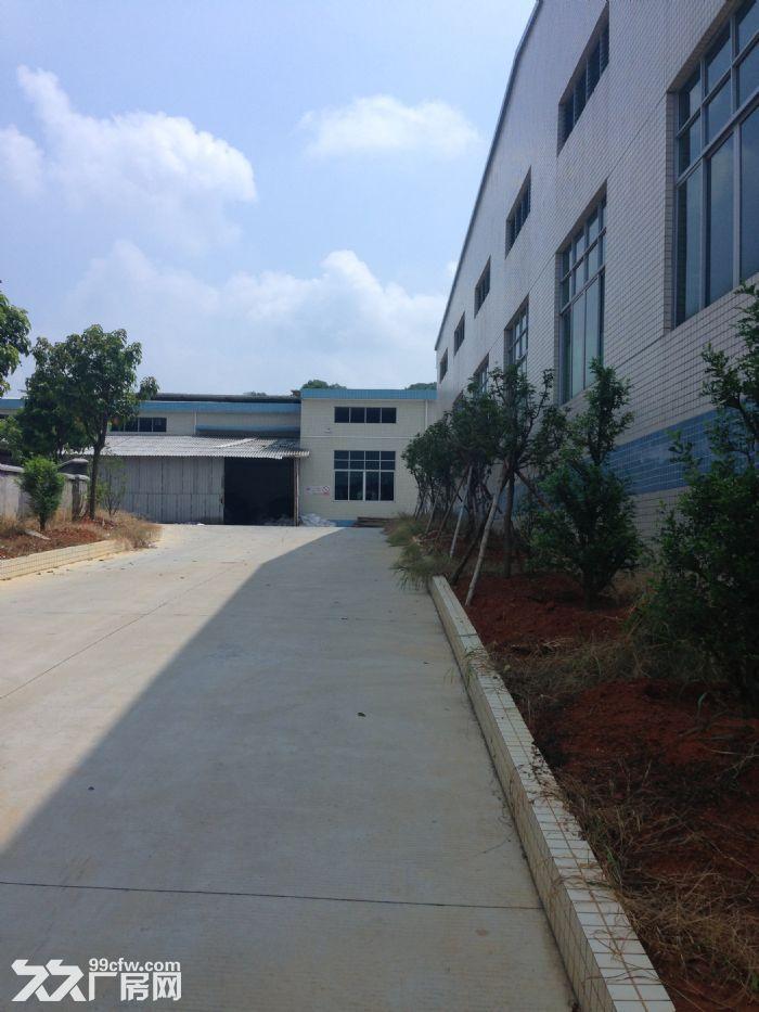 先出租新华工业园7400m简易厂房-图(2)