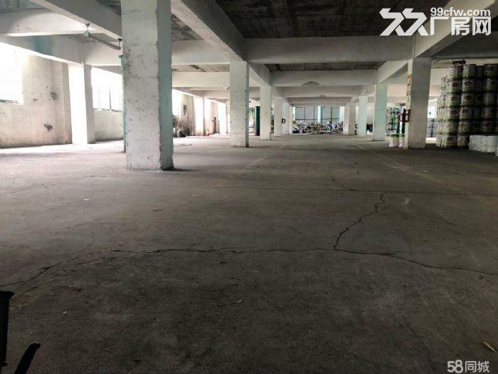 现花东5600m简易厂房出租-图(1)