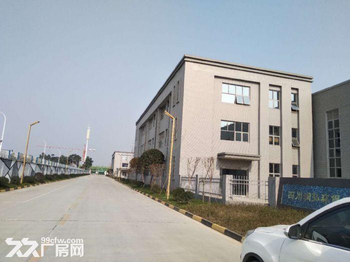 出租新都厂房3000平米可办证-图(4)