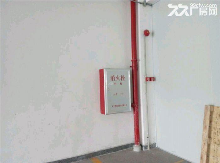 番禺标准办公带工业房产证3600方、有电梯有客梯-图(7)
