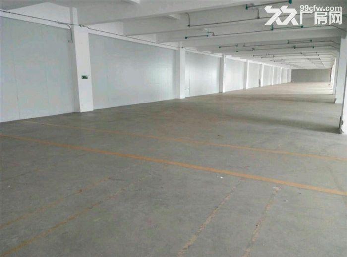 番禺标准办公带工业房产证3600方、有电梯有客梯-图(6)