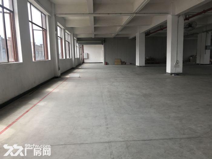 独门独院工业园内、1000方消防有证有隔热瓦-图(3)