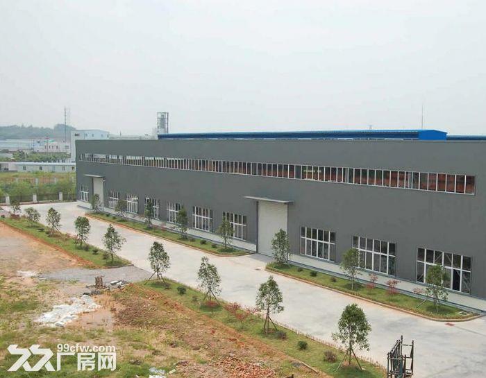 高度11米,租椒江开发大道附近2000平3000平6000平全部单层可分割电很大-图(1)