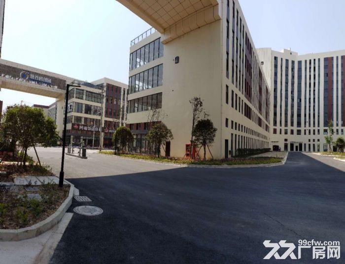 椒江二桥附近慧谷创业园厂房出租-图(5)