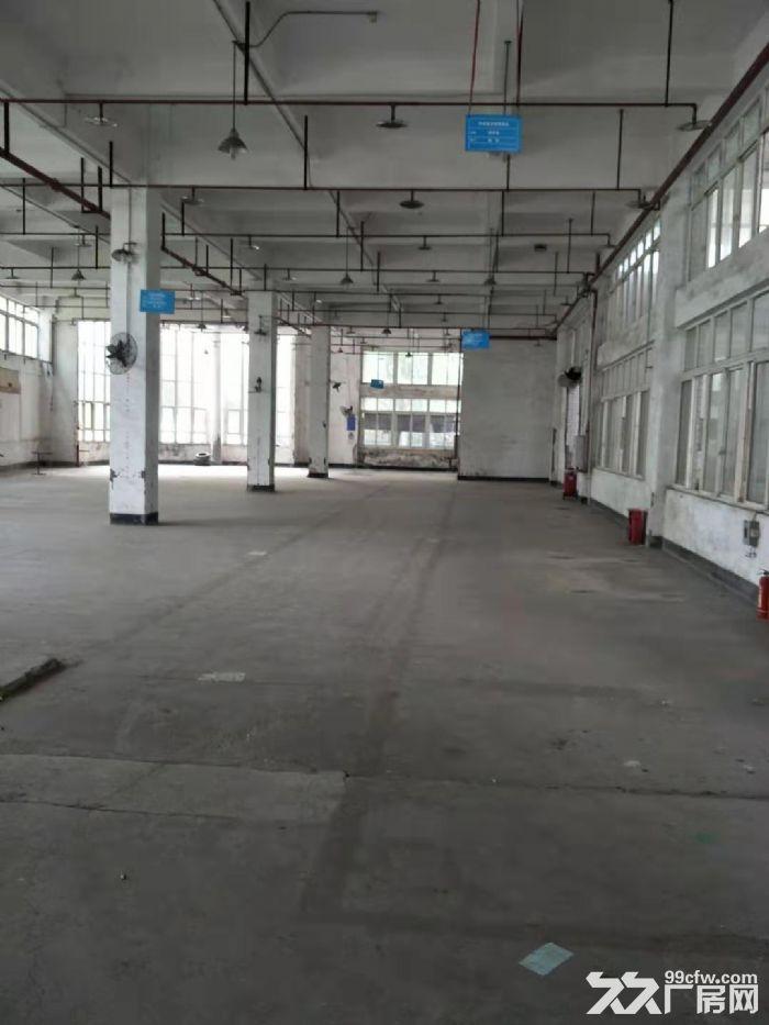 南岸茶园机电工业园7500平厂房出租-图(2)