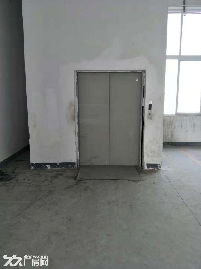 南岸茶园机电工业园7500平厂房出租-图(4)