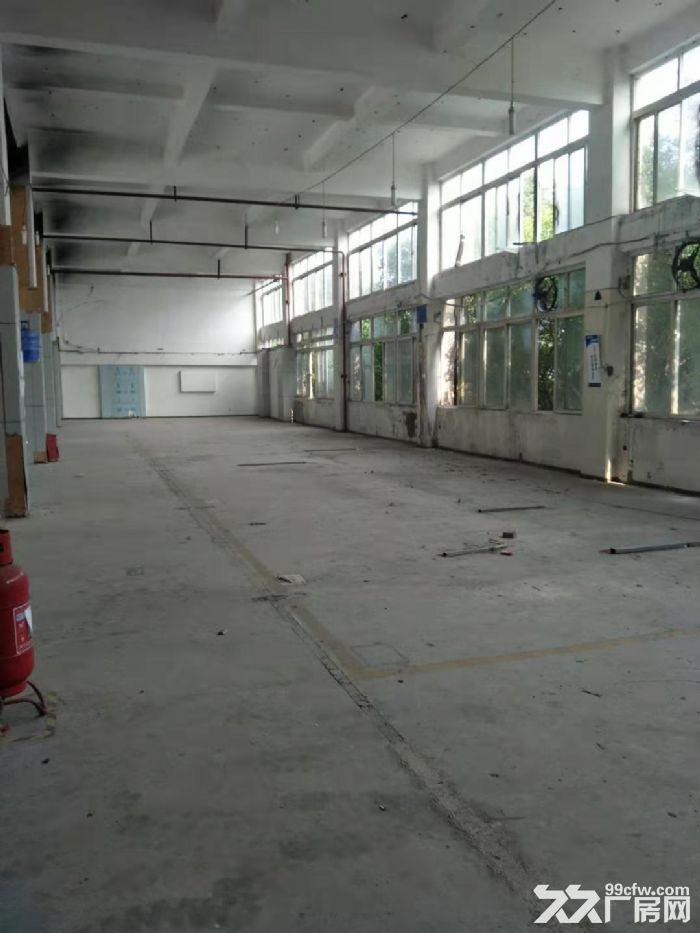 南岸茶园机电工业园7500平厂房出租-图(5)