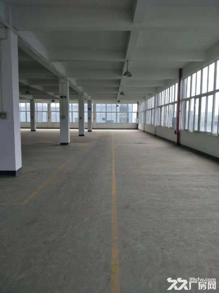 南岸茶园机电工业园7500平厂房出租-图(7)