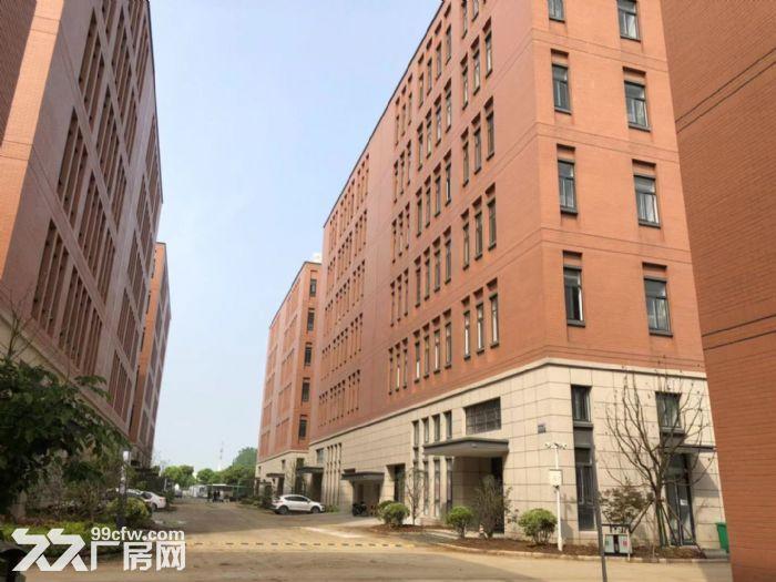 新建标准厂房现房出售双证齐全可分割办证-图(2)