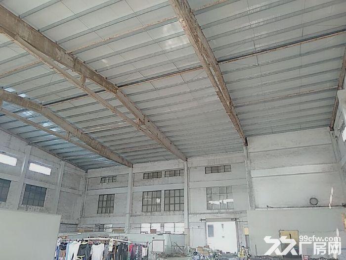 南屏科技园一楼厂房2000平方,层高15米,适合球馆,仓储-图(3)