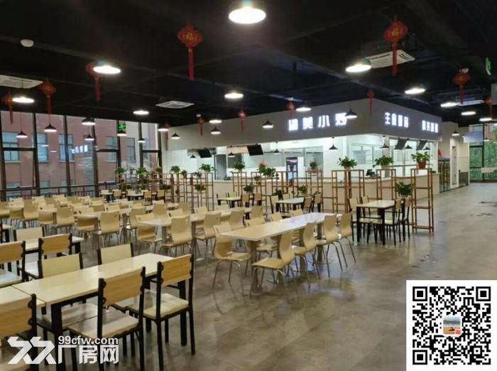 吴中重点项目独立产权高标准绿色新建厂房配套宿舍食堂高架路旁绝对好区位-图(4)