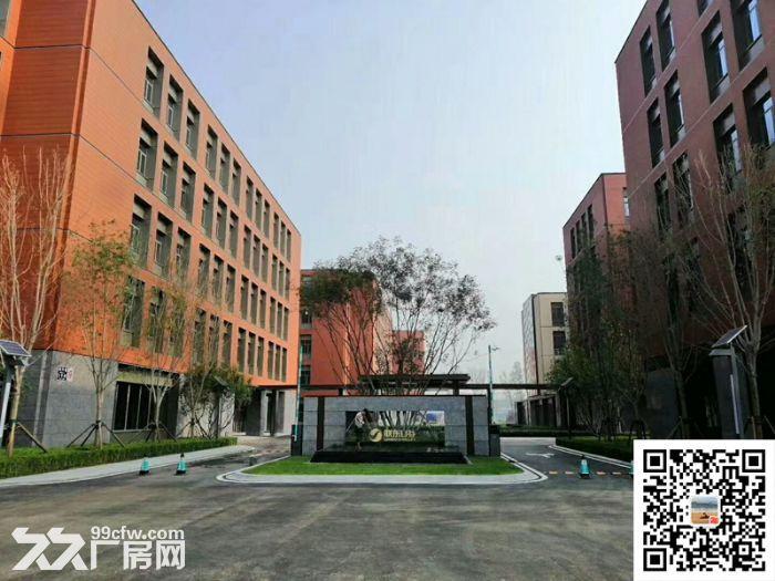 吴中重点项目独立产权高标准绿色新建厂房配套宿舍食堂高架路旁绝对好区位-图(7)